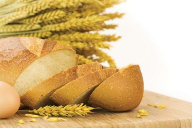 Mısır ekmeğinizi kendiniz yapın