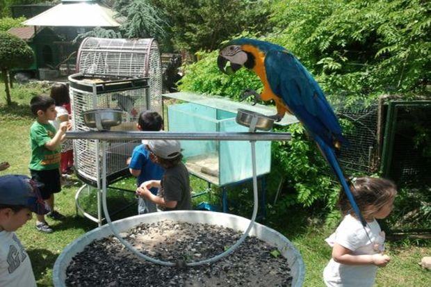 Şile Hayvanat Bahçesi