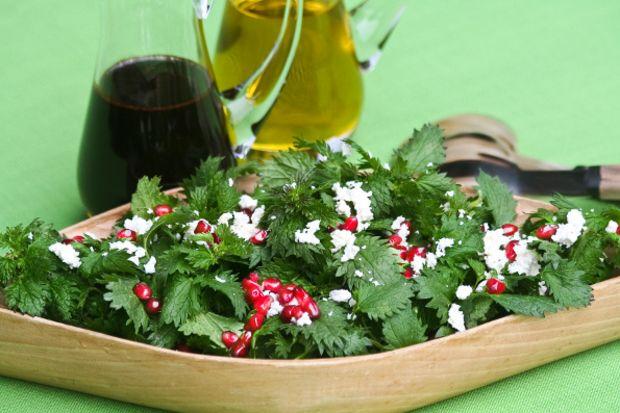 Isırgan otu salatası