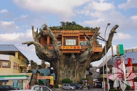 Ağaç ev modelleri