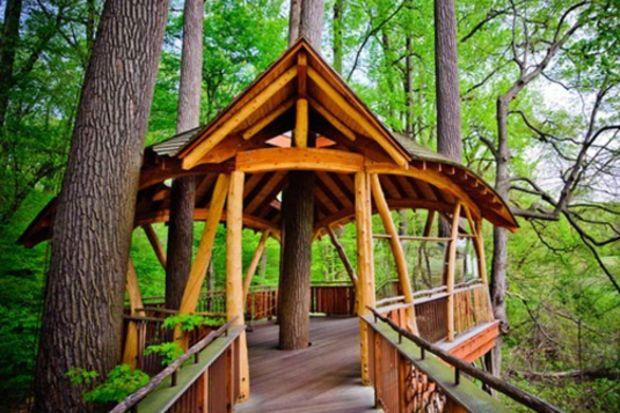 Herkesin içinde olmak isteyeceği ağaç evler