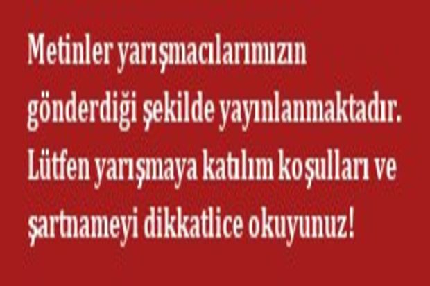 Burak Efe Bağcivan
