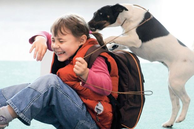 Köpekle büyüyen çocuk daha sağlıklı!