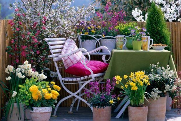 Bahçe süsleme & çiçeklendirme...