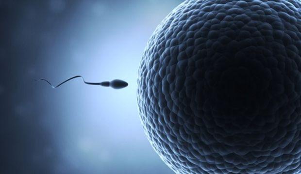 Tüp bebek sürecinde suni döllenme nasıl olur?