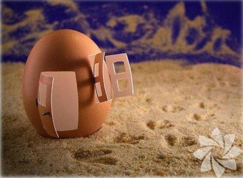 Yumurtalarla sanat...