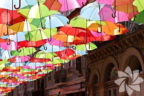 Rengarenk yüzlerce şemsiyenin gökyüzünde olduğunu düşünün. İşte Portekiz'in Aguede şehrinin sokakları böyle bir festivale ev sahipliği yapıyor.