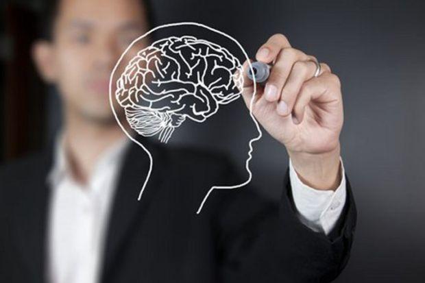 Beynin gelişimi 25 yıl sürüyor…