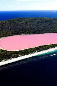 Doğanın mucizesi: Pembe Göl
