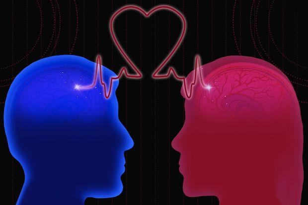 Kadın ve erkek beyninin farklı olmadığı açıklandı