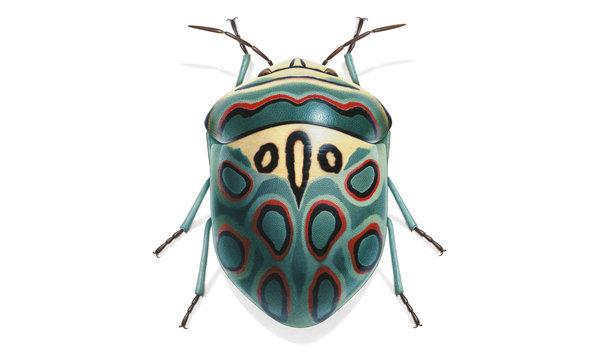 Ressam suluboya ile harika sanatını icra ederek aşık olduğu böceklerin portrelerini resmetti ve bu eserini 1980 yılında yayınladı. Tanımlanmış yaklaşık 1.5 milyon böcek var ve bunların 400.000'i kınkanatlı.