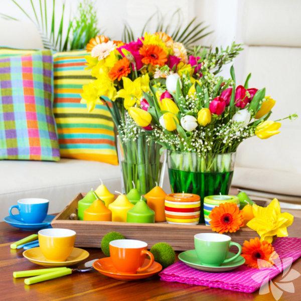 Bitkiler, evlere sağlık katan etken güçtür. Üstelik tüm faydalarının yanı sıra evinizin görünümünü de güzelleştirirler.