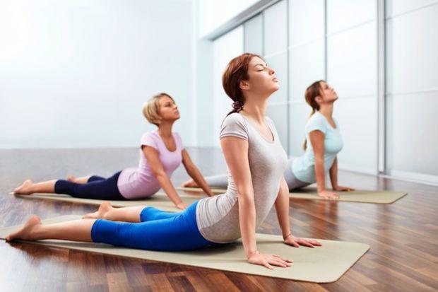Yoga Bhoga Eğitimi