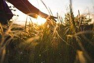 Gerçekten mutlu olduğunuzun 13 işareti