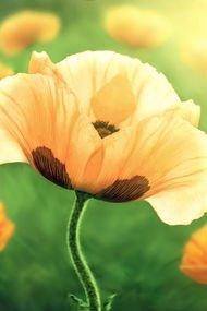 Günlük hayatınızı geliştirecek 10 öneri