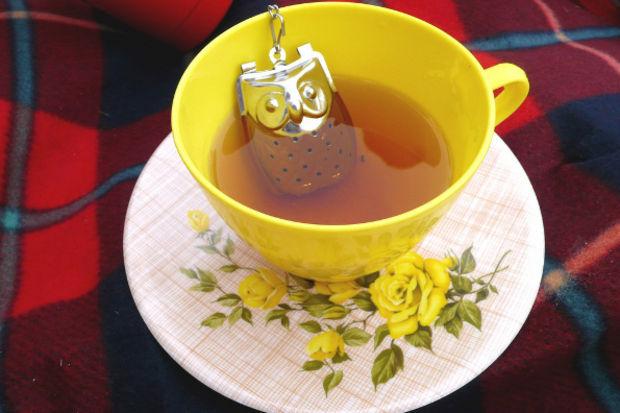 En ilginç çay süzgeçleri