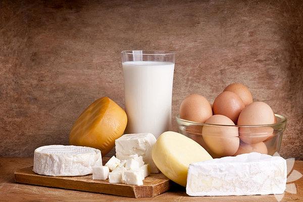 Süt ürünleri: İçerdiği yüksek protein ile vücut dokularının gelişmesine yardımcı olan süt ve süt ürünleri odaklanma ve hafızayı geliştirir. Büyümeyi ve gelişmeyi sağlayan süt, vücuda güç verir ve kemikleri sağlamlaştırır. Beyin için oldukça faydalıdır ve beynin ihtiyacı olan enerjiyi sağlar. Görme yeteneğini korumada faydalıdır, içerdiği B vitamini hafızayı güçlendirir. E vitamini ise hücrelere zarar veren maddelere karşı savaşır ve bu maddeleri etkisiz hale getirir. Alzheimer'a karşı koruma sağlar.