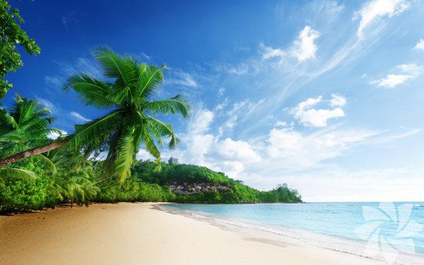 Karayipler, diğer bir deyişle Batı Hint Adaları, Karayip Denizi'ni, çevreleyen sahilleri kapsayan bölgedir.