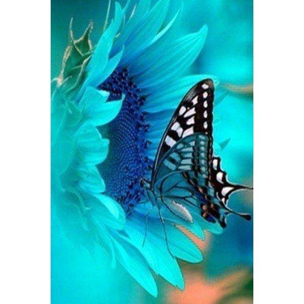 Bu kelebeklere bayılacaksınız...
