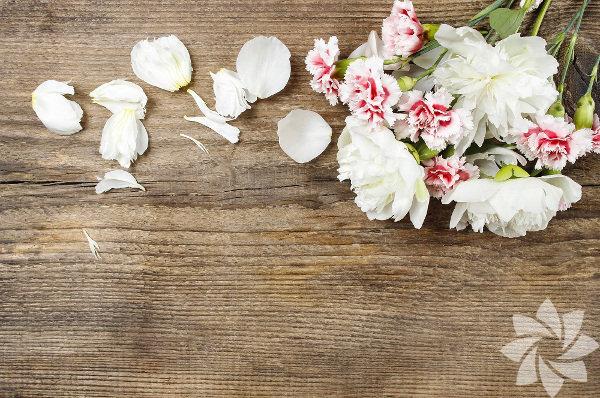 Karanfil Evinizde romantizm yaratmak için yatak odanızda beyaz karanfil bulundurun. Beyaz karanfil, sakinlik ve huzurun yanı sıra romantizmin enerjisini de size yansıtacaktır.