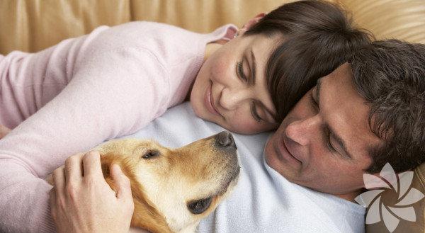 Ev hayvanları Yapılan araştırmalara göre, ev hayvanları ile büyüyen çocukların astıma yakalanma riskinin düştüğü ortaya konmuştur. Soğuk algınlığı ve diğer mikroplara maruz kalan çocukların sonunda alerji, astım ve diğer sağlık sorunları ile karşılaşması daha az olasıdır.