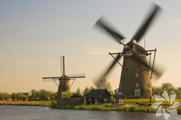 Hollanda'nın başkenti.