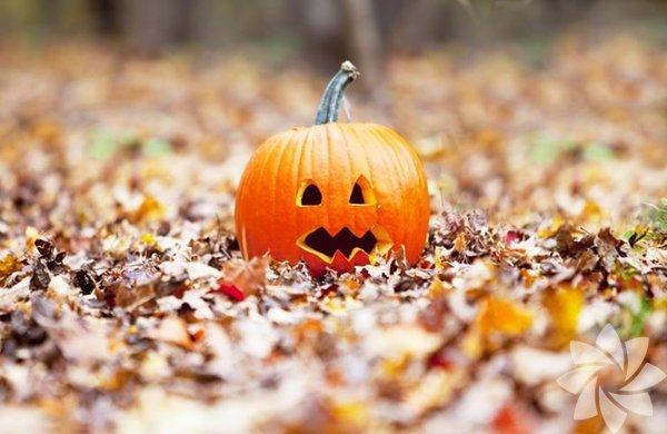 Amerika'da oldukça büyük ve görkemli bir festival olan Cadılar Bayramı, Amerikan kültürünün etkisiyle diğer Batılı ülkelerde de yaygınlaşmaktadır.