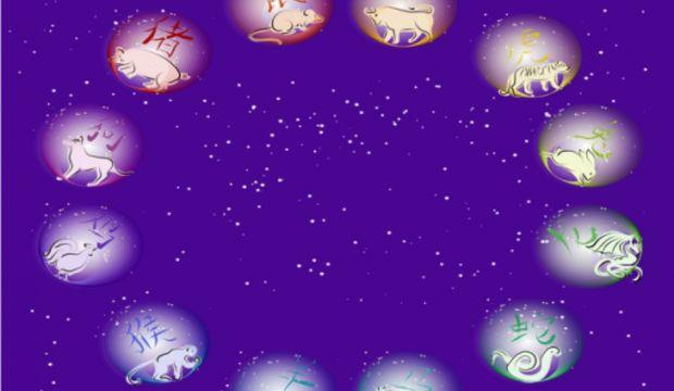 Çin Astrolojisi kişisel kılavuz raporu nedir?