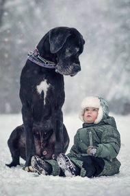 Küçük çocuklar ve büyük köpekler