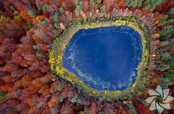 Pomerania Gölü, Polonya
