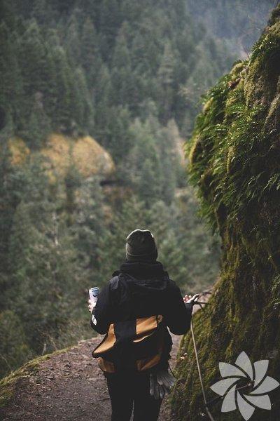 Bu güzel doğa fotoğraflarına bakıp buralarda yapılacak olası yorumlar... Ayı vardır o yolda!
