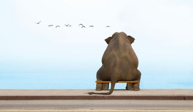 Yalnızlık hissine dikkat!