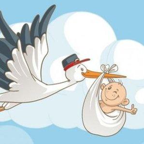 Bebek Cinsiyet Belirleme Hthayat
