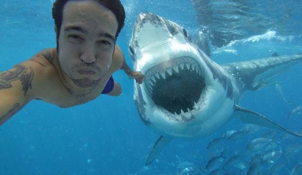 Köpek balığı saldırısı mı, selfie çekmek mi?