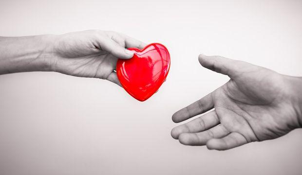 Organ bağışına dair her şey