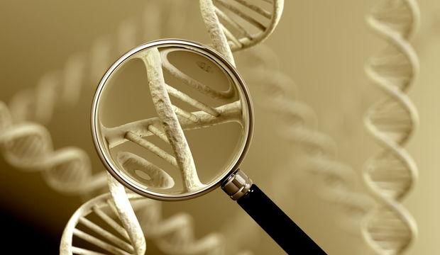 DNA Testi hakkında ne biliyorsunuz?