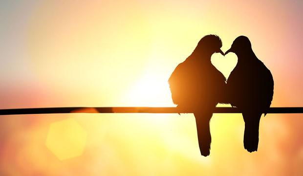 Neden aşık oluyoruz?