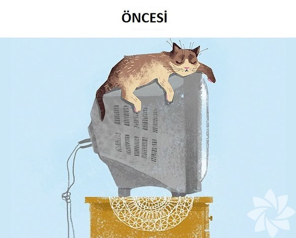 Teknoloji kedilerin hayatını nasıl değiştirdi?