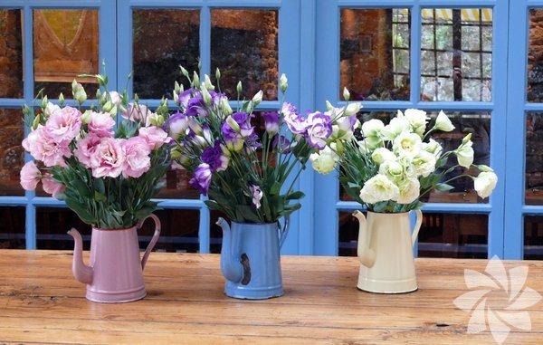 Eski çiçek sulama kaplarına hayat verinKullanmadığınız bir sürahiye veya çiçek sulama kabınızı uyumlu renklerle yan yana koyup güzel bir dekor elde edebilirsiniz.