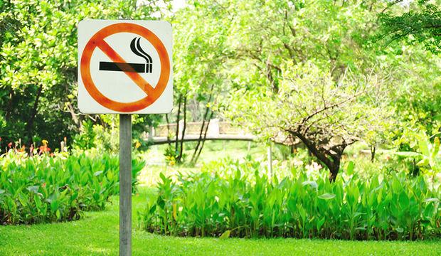 Vücudunuzdaki nikotinden kurtulun!