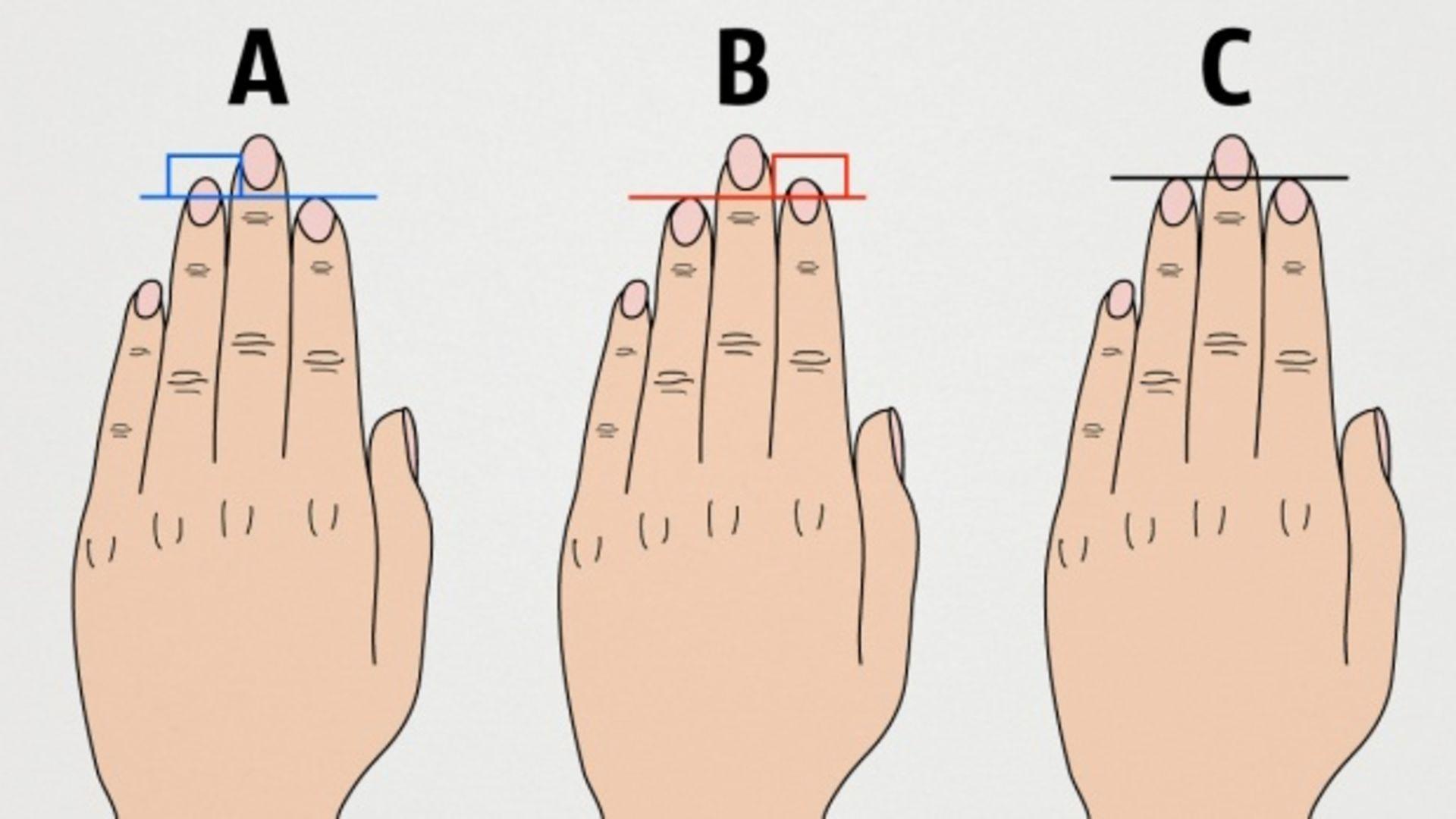 parmak uzunluguna gore kisilik analizi