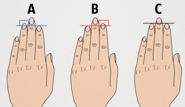 Parmak uzunluğuna göre kişilik analizi