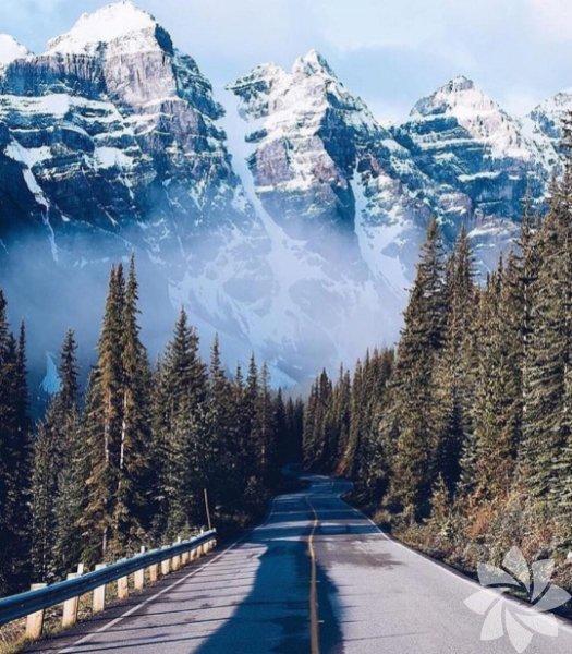 Banff Ulusal Parkı