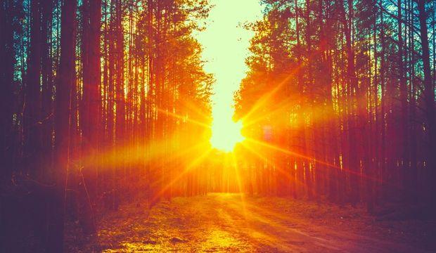 Sabah uyandığınızda yapmamanız gereken 7 şey