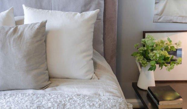 Yatak odanızda bu 10 bitki mutlaka olsun