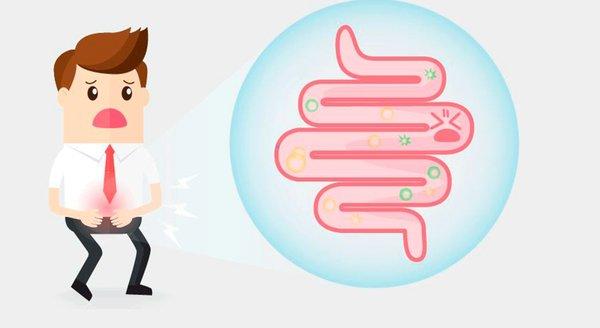 Bağışıklık sistemimizin temeli olan hücrelerin yüzde 70'i bağırsak duvarlarımızda yaşar. Kötü bir sindirim, kötü bir beslenme, stres, çevresel toksin maddeler birleşince, bağırsaklarınızın sağlığı giderek azalıyor.  İşte tam da bu an davranışımıza çeki düzen vermenin ve sistemli bir beslenmeye geçmenin zamanıdır! Beslenme düzeninize ekleyeceğiniz bazı yiyecekler bağırsaklarınızın temiz olmasını sağlayacaktır.