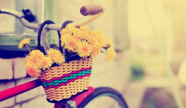 Bisiklet ve özgürlük rehberi