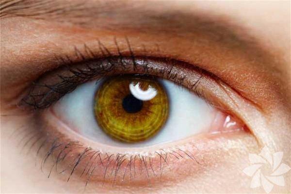 Megapiksel farkı Bilimsel bir bakış açısından bakıldığında insan gözüyle bir dijital kamerayı kıyaslamak tabii ki doğru değil. Bunu bir kenara bırakıp kıyaslama yaptığımızda ise göz bebeğimizin merkezinde yaklaşık olarak 126 megapiksel sayabiliriz.