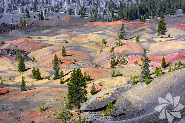 Lassen Volkanik Milli Parkı, Amerika'da Kaliforniya'nın kuzeydoğusunda bulunan milli parklardan biri.