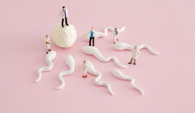 Erkeklerin sperm sayısı giderek düşüyor